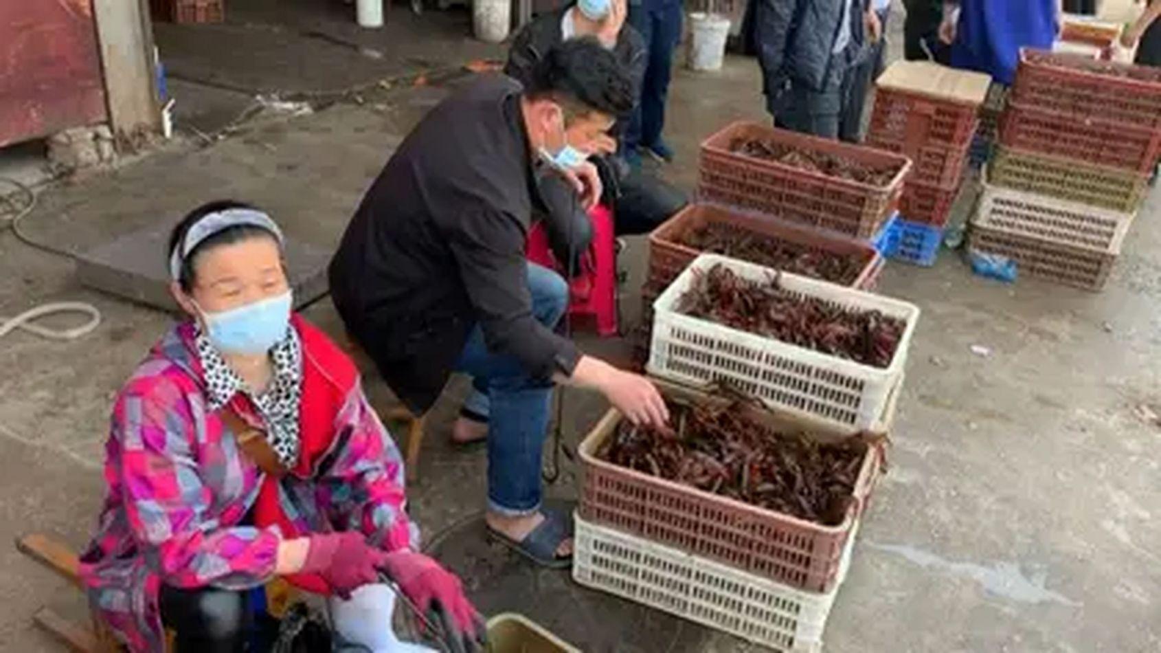 Wuhan, donde se inició el coronavirus, prohibió el consumo de animales salvajes